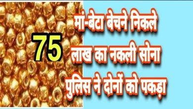 Photo of मां-बेटाबेचने निकले75 लाखका नकली सोना, पुलिस ने दोनों को पकड़ा